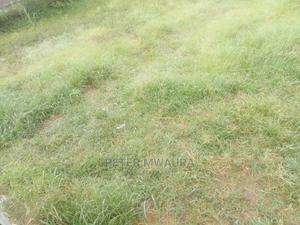 1/2 Acre Land for Sale   Land & Plots For Sale for sale in Nyandarua, North Kinangop