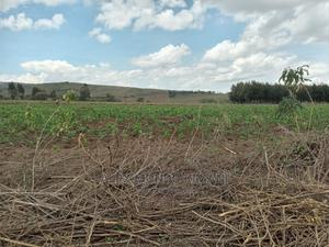 Agricultural Land at Ndabibi   Land & Plots For Sale for sale in Naivasha, Maella