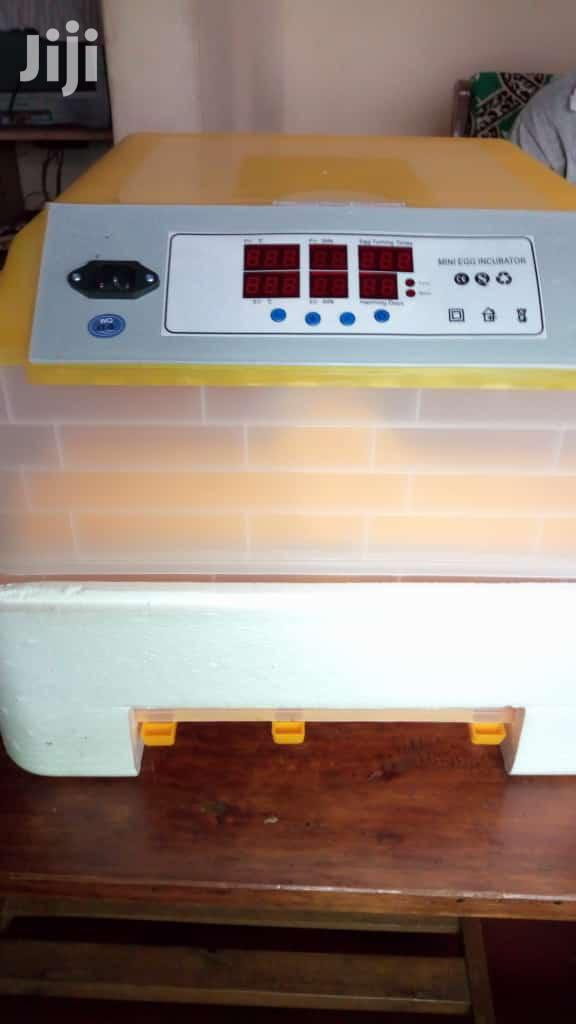 Archive: 48 Egg Fully Automated Incubator