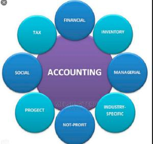 Financial and Accounting Management Software | Software for sale in Nairobi, Nairobi Central