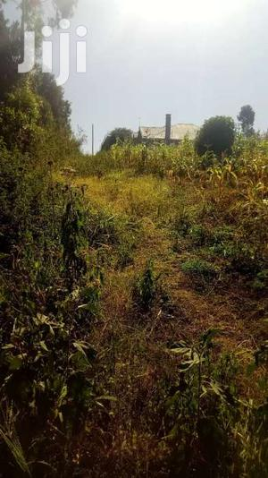 1/8 Plot For Sale In Kasphat | Land & Plots For Sale for sale in Kiambu / Kiambu , Ndumberi