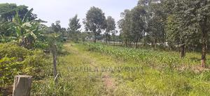 Buema 1 Acre   Land & Plots For Sale for sale in Bungoma, Marakaru/Tuuti