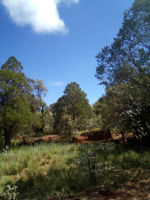 Land for Sale at a Throw Away Price | Land & Plots For Sale for sale in Narok, Narok Town