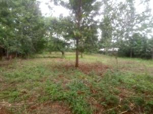 Prime 1/2 Acre Residential Land for Sale in Kagio(Kiunga)   Land & Plots For Sale for sale in Kirinyaga, Mutithi