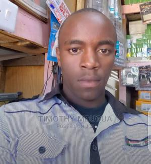 Project Manager   Manufacturing CVs for sale in Nairobi, Kasarani