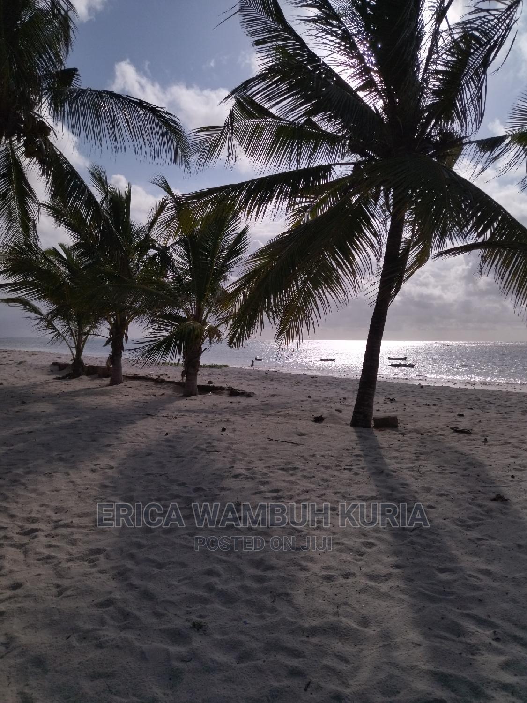 Archive: Beachfront Studio Diani