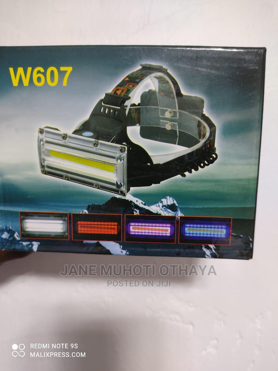 W607 LED Headlamp Rechargeable Batteries