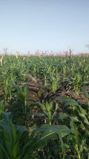 Malindi Plots for Sale | Land & Plots For Sale for sale in Malindi, Town Centre