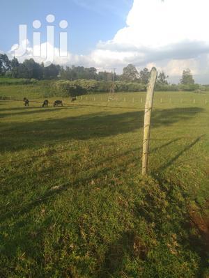 10 Acres Muguga | Land & Plots For Sale for sale in Kikuyu, Muguga