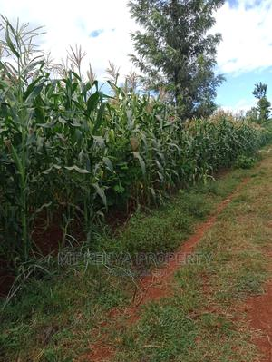 Quarter Acre 3kms From Kagio Town   Land & Plots For Sale for sale in Kirinyaga, Mutithi