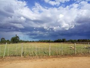 5 Acres for Sale in Illula   Land & Plots For Sale for sale in Ainabkoi, Illula