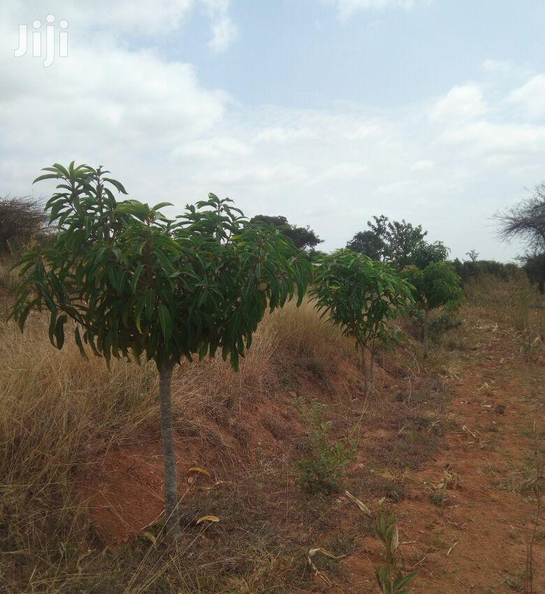 11⁄2 Acres on Sell | Land & Plots For Sale for sale in Katangi, Machakos, Kenya