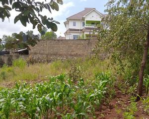 Plots for Sale in Kenol | Land & Plots For Sale for sale in Murang'a, Kimorori/Wempa