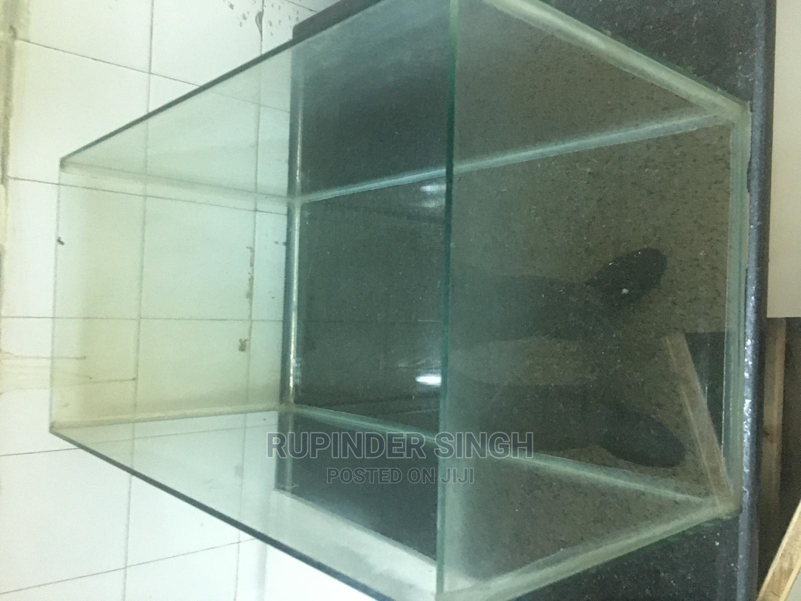 Glass Aquriums | Fish for sale in South C, Nairobi, Kenya