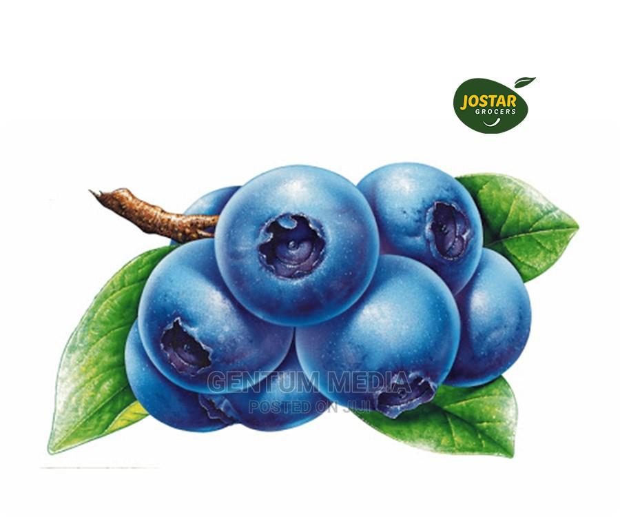 Blueberry Available Now Available