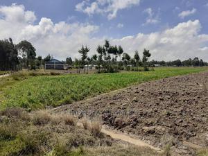 5.5 Acres for Sale in Ol Magogo Murungaru North Kinangop   Land & Plots For Sale for sale in Nyandarua, Murungaru