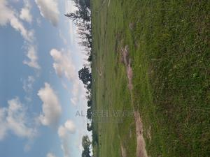 2 Acres Land for Sale With Title Deed in Malindi   Land & Plots For Sale for sale in Kilifi, Malindi
