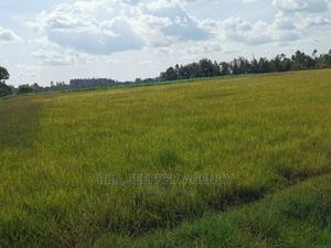 20 Acres for Sale in Illula   Land & Plots For Sale for sale in Ainabkoi, Illula