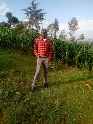 Sales Telemarketing CV   Sales & Telemarketing CVs for sale in Trans-Nzoia, Endebess