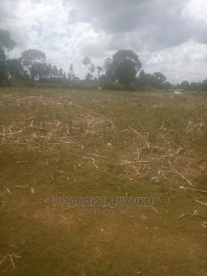 1 Acre for 4 Year's to Rent   Land & Plots for Rent for sale in Kakamega, Lumakanda