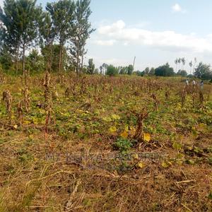 Kagio Plots   Land & Plots For Sale for sale in Kirinyaga, Mutithi