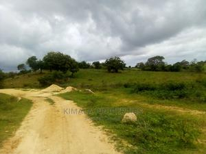 Mambrui 10 Acres of Land.   Land & Plots For Sale for sale in Kilifi, Malindi