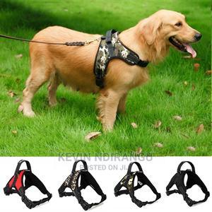 Dog Leash Harnesses | Pet's Accessories for sale in Nairobi, Karen