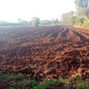 Kirinyaga Virgin Land (4 1/4) Acres   Land & Plots For Sale for sale in Kirinyaga, Mutithi