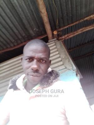 Sales Manager | Management CVs for sale in Homa Bay, Homa Bay Central