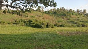 Agricultural Land Onsale at Mwakirunge Kwa Chief   Land & Plots For Sale for sale in Mombasa, Kisauni