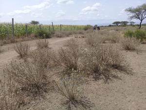 300 Acres Under One Tittle Deed | Land & Plots For Sale for sale in Kajiado, Kimana