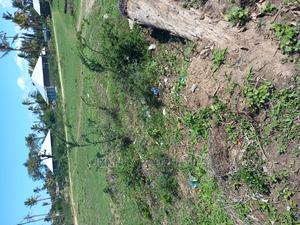 Yard for Rent in Nyali Mombasa   Land & Plots for Rent for sale in Mombasa, Nyali