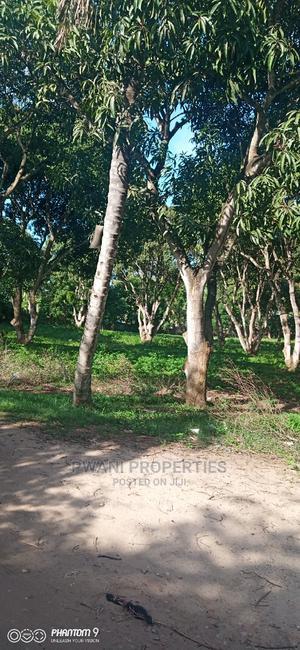 *Agricultural Farm for Sale* *Mtwapa Bomani Medical School   Land & Plots For Sale for sale in Kilifi, Mtwapa