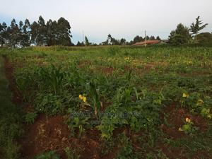 Land for Sale | Land & Plots For Sale for sale in Kiambu, Gitaru