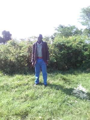 Accountant   Accounting & Finance CVs for sale in Narok, Kimintet