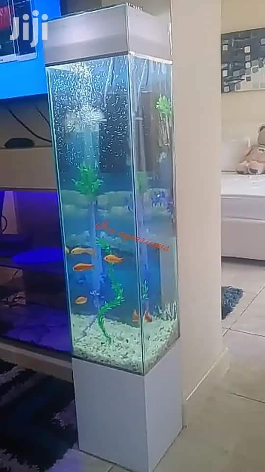 Archive: Tower Aquarium 5ft