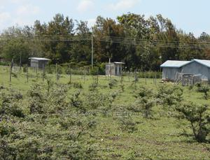 1/8 Acre Plots for Sale in Kiserian   Land & Plots For Sale for sale in Kajiado, Kiserian