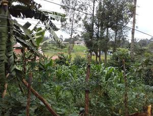 Prime Plot for Sale in Gikambura 100*100. | Land & Plots For Sale for sale in Kiambu, Kikuyu