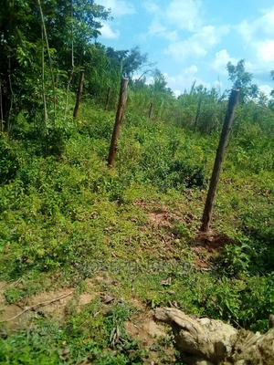 Got Oyenga   Land & Plots for Rent for sale in Siaya, South East Alego