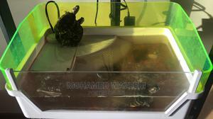 Terrapin Tank With Pump and Sand | Reptiles for sale in Nairobi, Kileleshwa