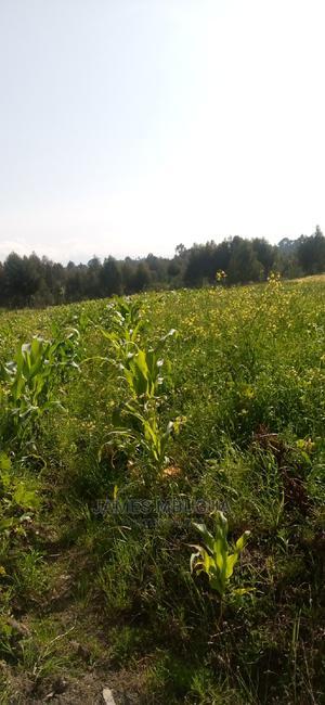 Land for Sale   Land & Plots for Rent for sale in Nyandarua, Murungaru