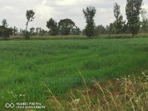 Land for Sale in Moiben   Land & Plots For Sale for sale in Moiben, Moiben