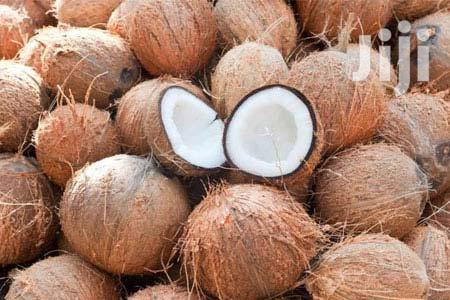 Archive: Coconut/Nazi