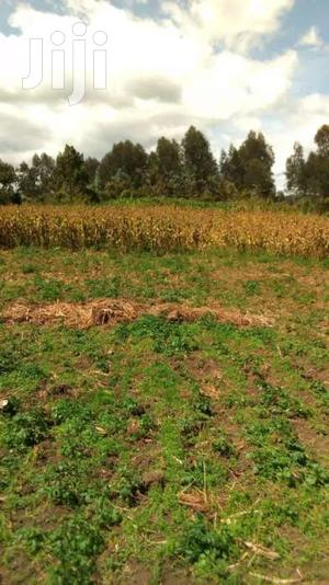 12 Acres of Land for Sale in Kinangop Engineer   Land & Plots For Sale for sale in Nyandarua, North Kinangop