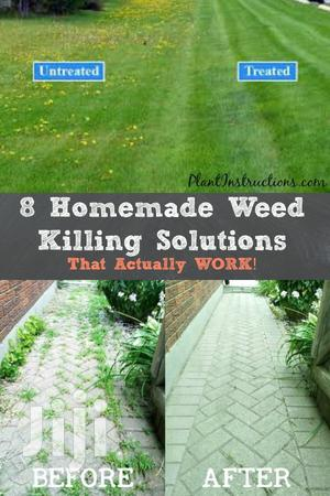 Weed Killer Service