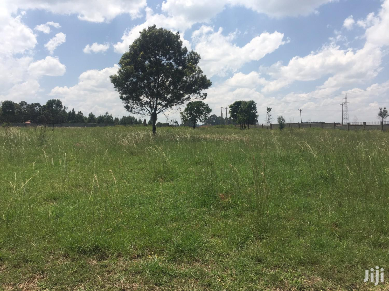 Prime Residential 1/4 Acre Plots Along Rivatex Kipkaren Road For Sale   Land & Plots For Sale for sale in Simat/Kapseret, Uasin Gishu, Kenya