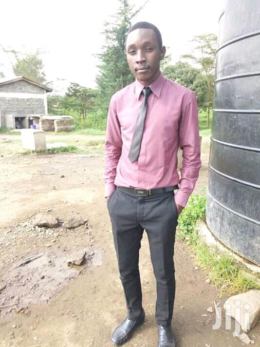 Seeking Work CV | Manual Labour CVs for sale in Mosop, Nakuru, Kenya