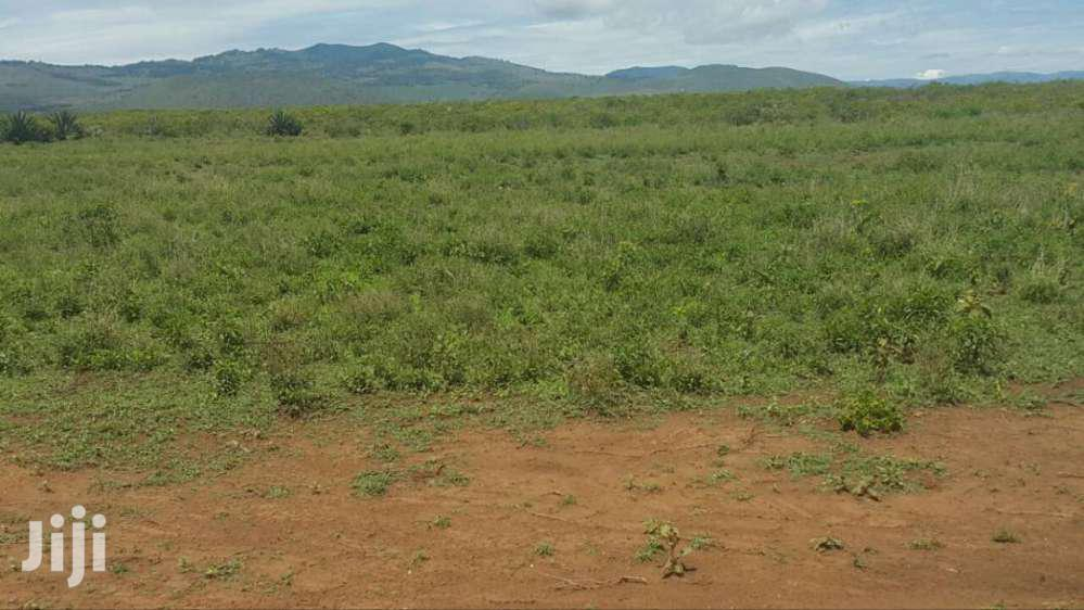 Archive: Affordable 50by100 Ft PLOTS FOR SALE In Gilgil Nakuru County