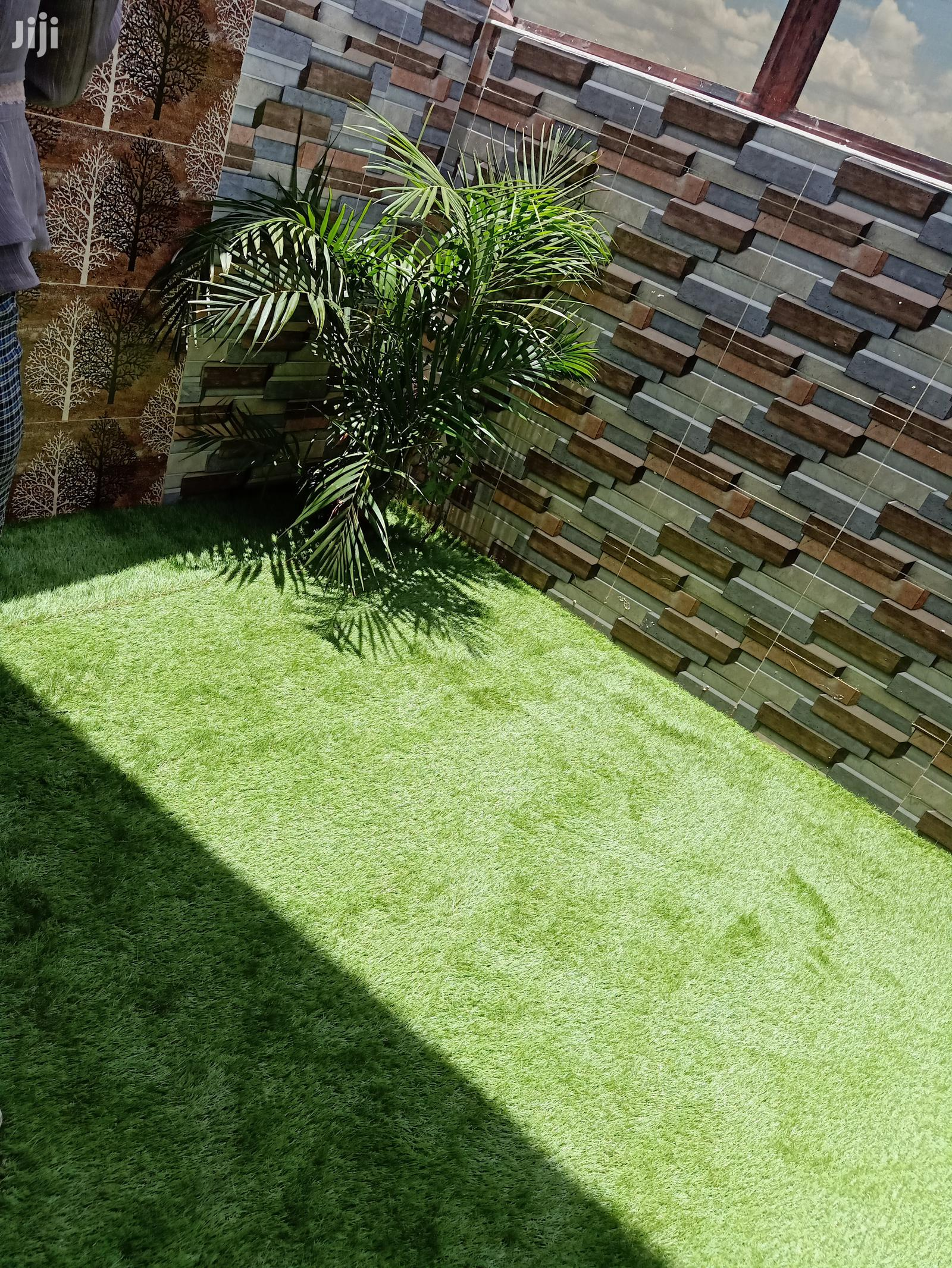 Archive: Lawn Grass And Garden Items