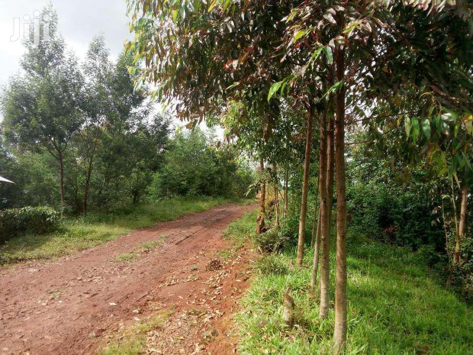 14 Acres In Gatanga(Gatura)   Land & Plots For Sale for sale in Gatanga, Murang'a, Kenya
